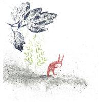 Der Hase ohne Nase I Annabel Lammers & Hanneke Siemensma
